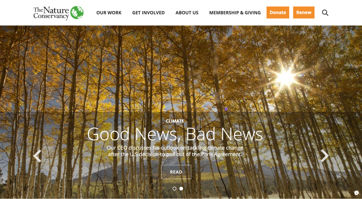 Nature Conservancy Website Sample