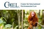 Website Redesign: Center for International Environmental Law